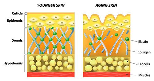 YoungerOlder Skin 500x262